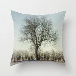 Winter tree in the low sun Throw Pillow