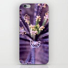Purple Euphorbia in Detail iPhone Skin
