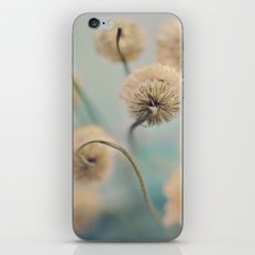Hazy Shade of Winter iPhone & iPod Skin
