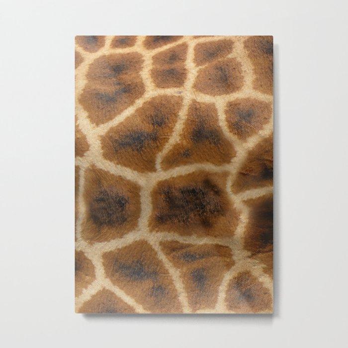 Giraffe Skin Metal Print