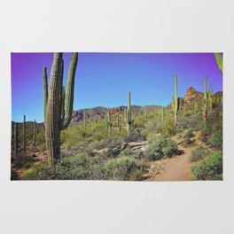 Superstition Mountains Rug