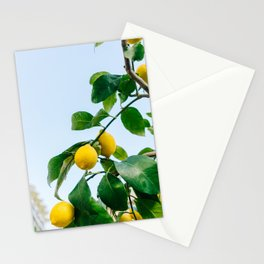 Amalfi Coast Lemons III Stationery Cards