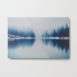 Icy Forest on Water (Color) Metal Print