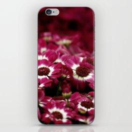 Maroon iPhone Skin