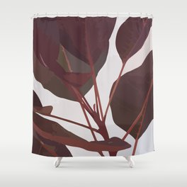 Cotinus Coggygria Royal Purple Stem Shower Curtain