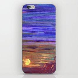 Magical Southwest Night Sky iPhone Skin