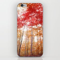 Red and Gold iPhone & iPod Skin