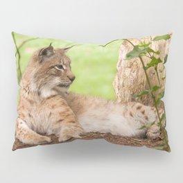 Lynx Lynx Pillow Sham