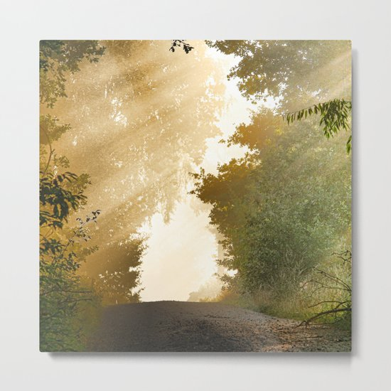 away-nature Metal Print