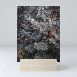 Spruce tree Mini Art Print