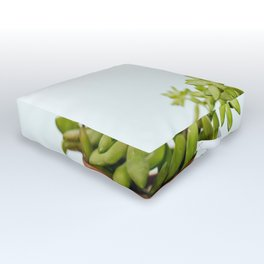 The Unidentified Houseplant Outdoor Floor Cushion
