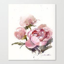 Peonies in watercolor Canvas Print
