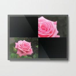 Pink Roses in Anzures 4 Blank Q2F0 Metal Print