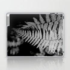 Two Ferns Laptop & iPad Skin