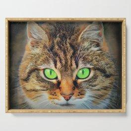 Orange Tabby Cat-Big Green Eyes Serving Tray