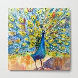 Peacock Pootinella Metal Print