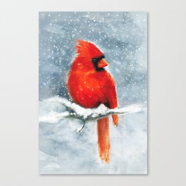 Northern Cardinal in the snow Canvas Print