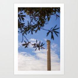 Caecilia Trebulla Art Print