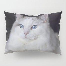 Ragdoll Cat Her Majesty Pillow Sham