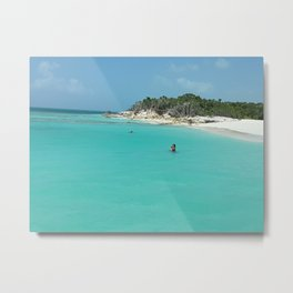 Swimming in the West Indies Metal Print