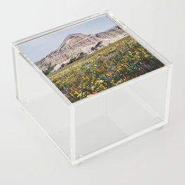 Fossil Mountain Wildflowers Acrylic Box