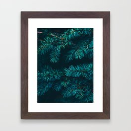 Pine Tree Close Up Neon Green Colorful Leaves Against A Black Background Framed Art Print
