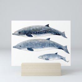 Blainville´s beaked whale Mini Art Print