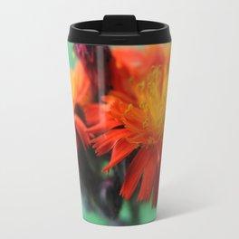 Orange Hawkweed Travel Mug