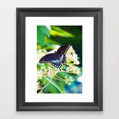 River Run Butterfly Framed Art Print