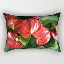 Red Flowers Anthurium Genus Rectangular Pillow