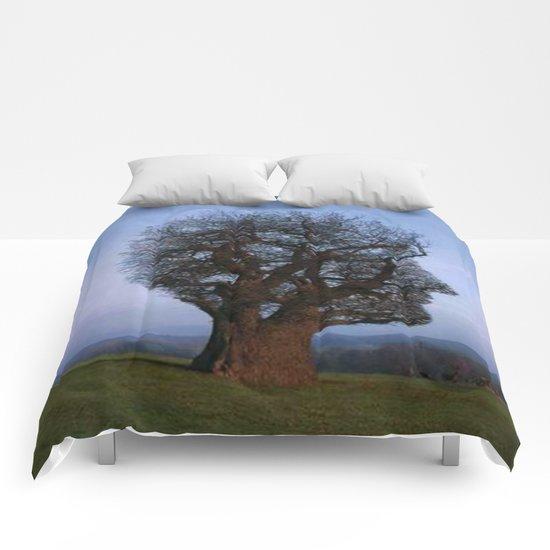 HEAD TREE Comforters