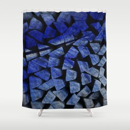 The Beauty Of The Feather Shower Curtain