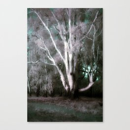 The Old Man of the Forest (False Colour) Canvas Print