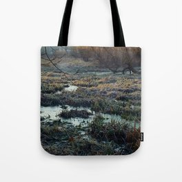 Is This What We've Seen All Along? Tote Bag