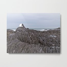 The Ends of the Earth are Frozen in Time Metal Print