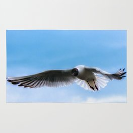 Come Fly with Me Rug