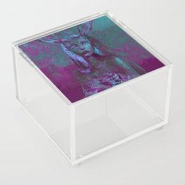 Fawn (Alternative Version) Acrylic Box