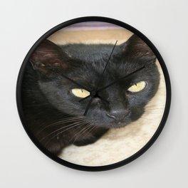 Beautiful Black Cat Portrait  Wall Clock