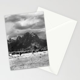 Horse and Grand Teton (Black and White) Stationery Cards