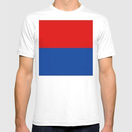 Flag of Misiones T-shirt