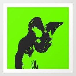 Calliope The Wonder Cat Art Print