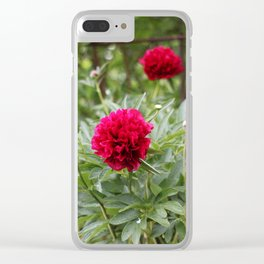 Red Peonies in Bloom Clear iPhone Case