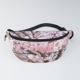 Cherry Blossoms at Edwards Gardens on April 19th, 2021. VI Fanny Pack