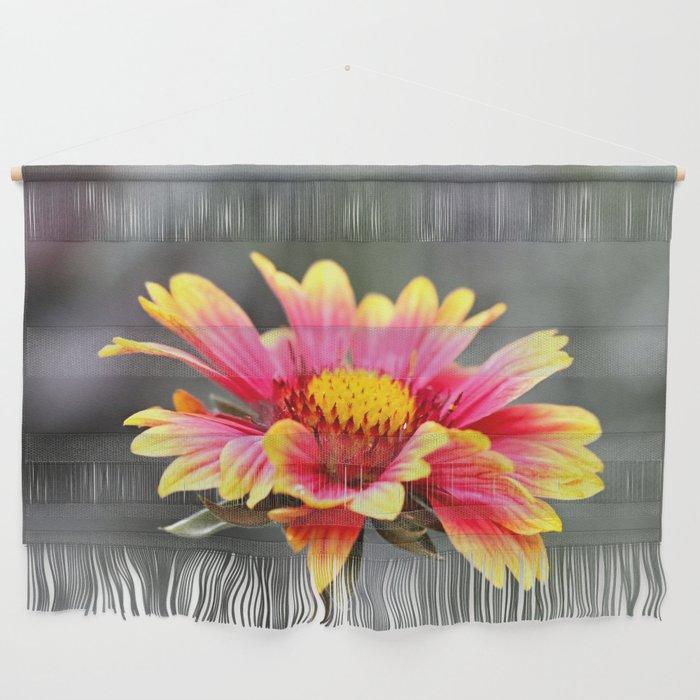 Sun in Bloom Wall Hanging