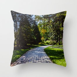 Pathway to the middle of nowhere Throw Pillow
