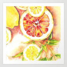 Slice of Citrus Art Print