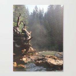 Umpqua Hot Springs Canvas Print