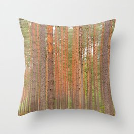 Slender tree trunks of a pine forest Throw Pillow