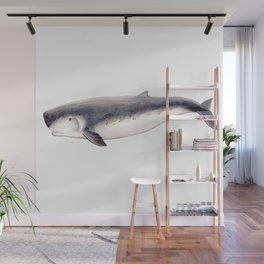 Pygmy sperm whale Wall Mural