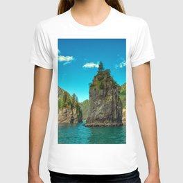 Alaska USA Kenai Fjords National Park Crag Nature Mountains Sky Rivers Rock Cliff mountain river T-shirt